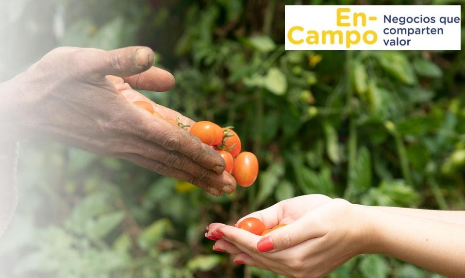 EN-CAMPO NEGOCIOS QUE COMPARTEN VALOR